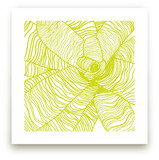 Variegated Plant Art Prints