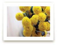 Golden Mums Art Prints