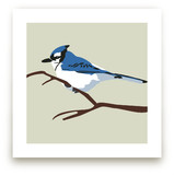 Blue Bird Art Prints