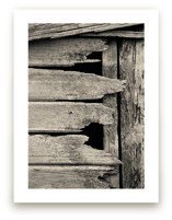 Salvage - Barn Series 1 Art Prints