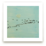 Geese, Lake Ontario Art Prints