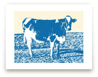 Petaluma Cow Art Prints