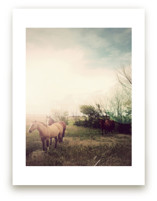 Horses at Dusk Art Prints