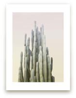 Summer Yellow Cactus Art Prints