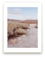 Desert Hot Springs Study 4