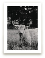 Annie Moffat Art Prints