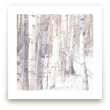 Winter Birches by Amy Hall