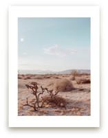Desert Hot Springs Study 3
