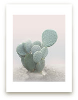 Little Cactus by Wilder California