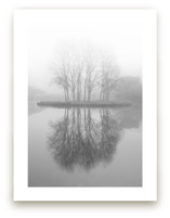 Real Reflections by Massimiliano Massimo Borelli