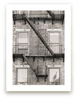 Brooklyn by Lindsay Ferraris Photography
