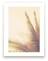 Golden Palm Tree by Wilder California