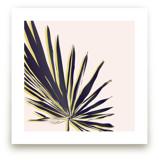 Palm Study #1