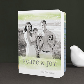 Peaceful Flurries Holiday Booklette Cards