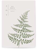 Foliage by Nazia Hyder
