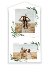 Evergreena All-In-One Holiday Cards