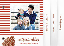 Stripes and Pine Holiday Minibook&amp;trade; Cards
