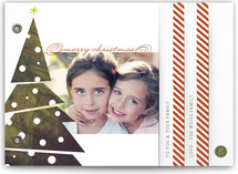 The Tree Holiday Minibook&amp;trade; Cards