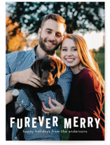 Furever Merry by Bethany Anderson