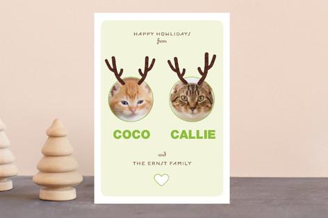 Reindog Holiday Petite Cards