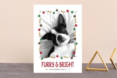Jingle Bones Holiday Petite Cards