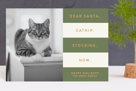 Catnip Now Holiday Petite Cards