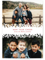 Paper Cut Snow Holiday Petite Cards