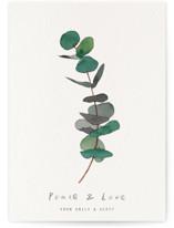 eucalyptus by jinseikou