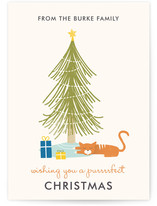 A Purrrfect Christmas Holiday Non-Photo Cards