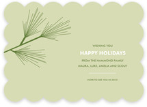 Pine Branch Holiday Non-Photo Cards