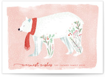 Festive Bear by Eve Schultz
