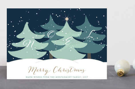 Noel Wishes Holiday Cards
