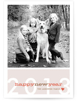 Modern Bright New Year New Year&#039;s Photo Cards