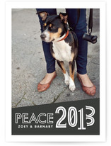 Vernacular New Year's Photo Cards