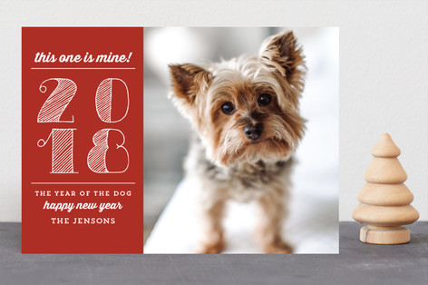 Year of the Dog New Year Photo Cards