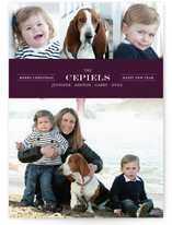 Modern Family Crest New Year&#039;s Photo Cards