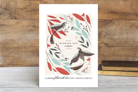 Winter Birds Holiday Postcards