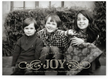Multiplied Joy Holiday Postcards