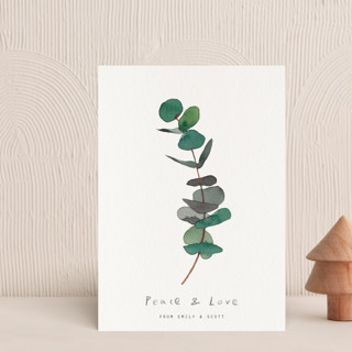 eucalyptus Holiday Postcards