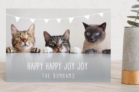 Bunting Holiday Holiday Postcards