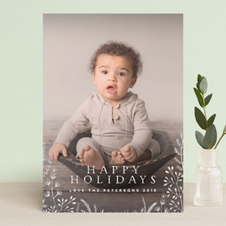 Wild and Free Holiday Postcards