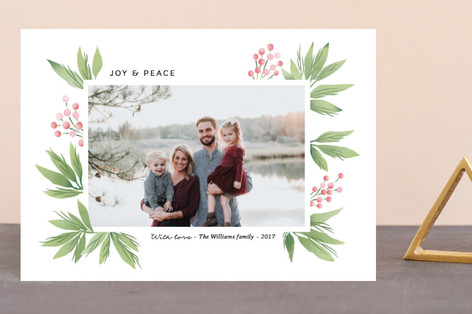 Festive Conifers Holiday Postcards