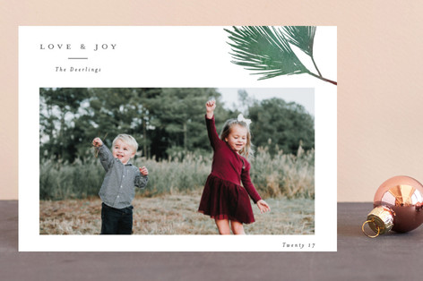Evergreen branch Holiday Postcards