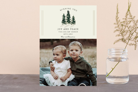 Holiday Spruce Holiday Postcards
