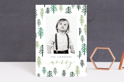Fresh Forest Holiday Postcards