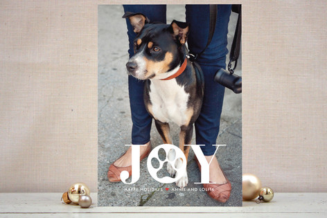 Paw Print Holiday Photo Cards