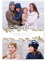 Winter Boughs Holiday Photo Cards
