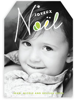 A New Noel Holiday Photo Cards