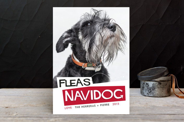"""""""Fleas Navidog"""" - Typography, Vintage Holiday Photo Cards in Cranberry by Pistols."""