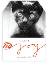 Peace, Love &amp; Yarn Holiday Photo Cards